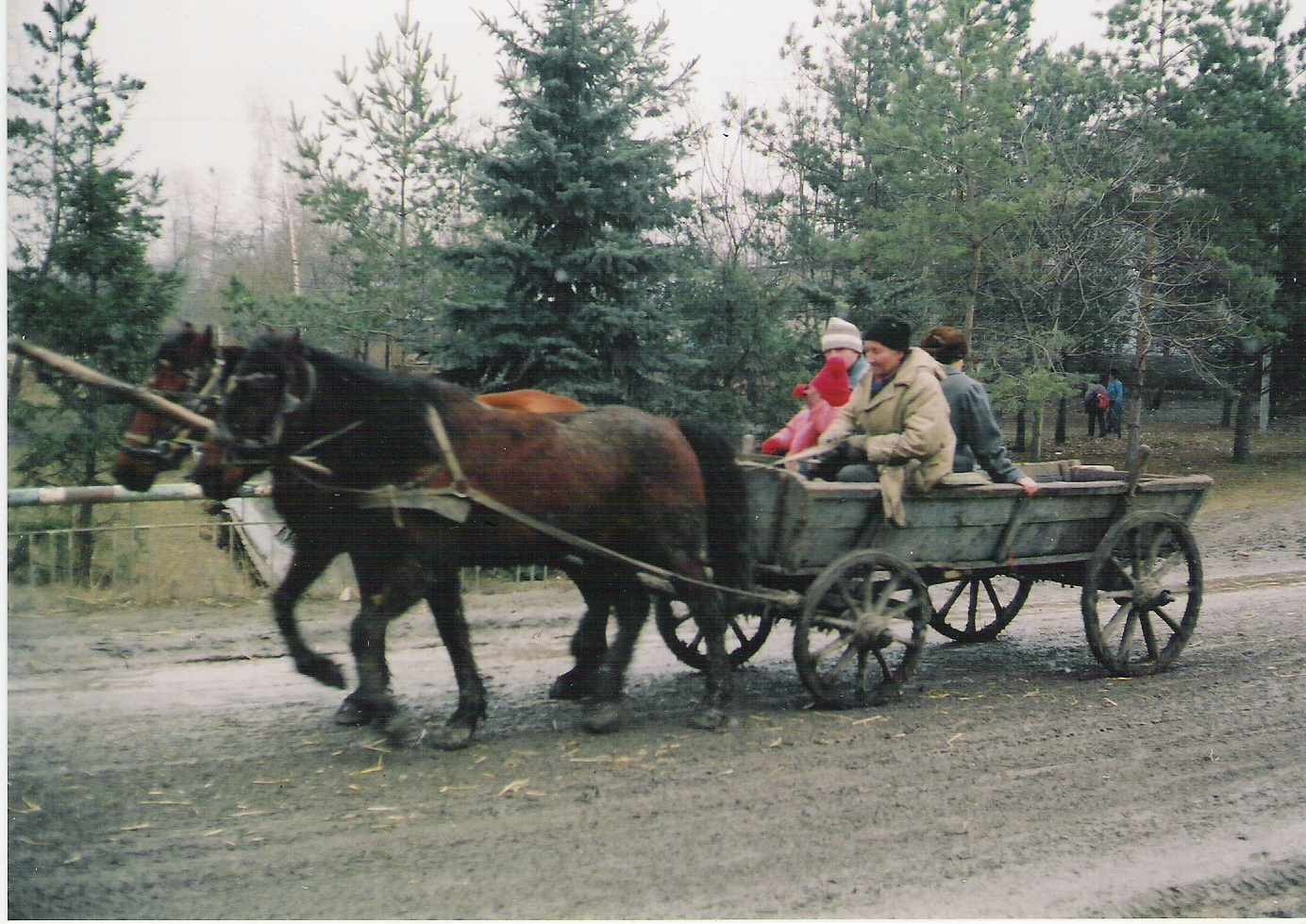 rush-hour-in-moldovan-countryside